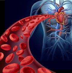 Heart Blood Health