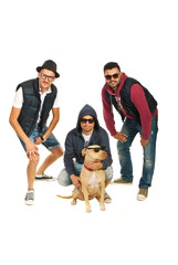 Rappers band with pitbull dog