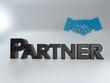 Partner 3D
