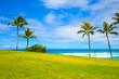 白い雲と緑の芝生と青空