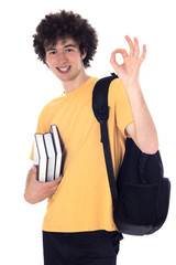 Smiling happy student showing ok sign.