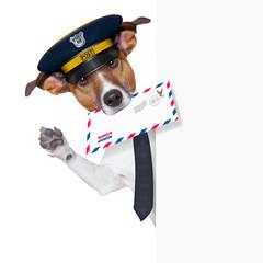 mail dog