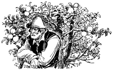 Old man standing at an apple tree