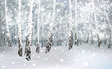 Vector of winter snowy birch forest.