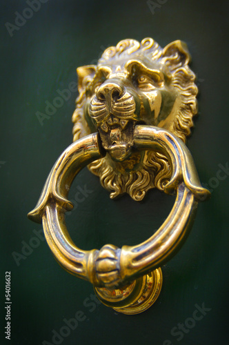 Lion Head Door Knocker, Ancient Knocker