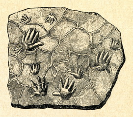 Fossil imprints of Chirotherium tracks