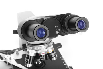 Ocular of microscope