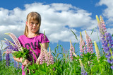 Young girl portrait in lupine flowers field