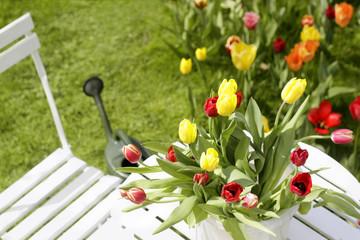 tulpen auf gartentisch mit gießkanne im hintergrund