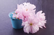 pink blossom flower in blue tin basket