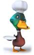 Fun duck