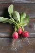 Small garden radish on old wooden background