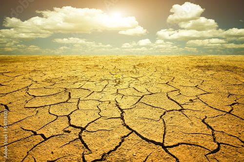 Drought - 54034003