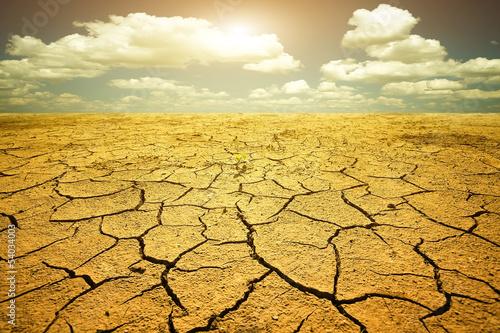 Leinwanddruck Bild Drought