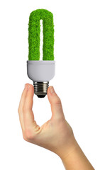 eco energy bulb in hand isolated on white