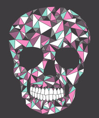 Skull with geometric pattern.