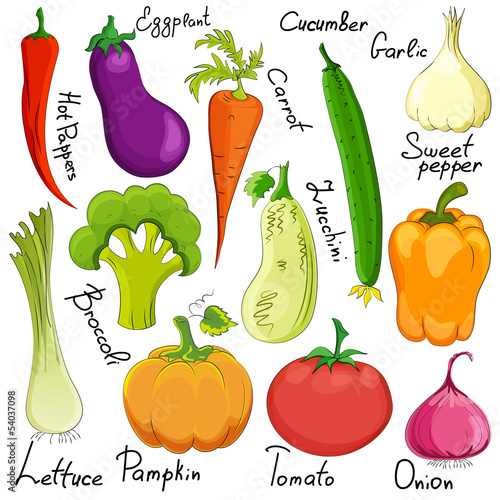funny vegetable cartoon isolated