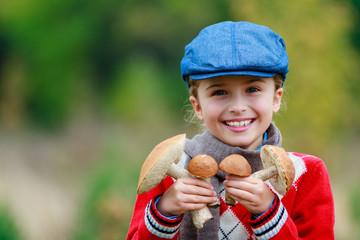Mushrooms picking, season for mushrooms.