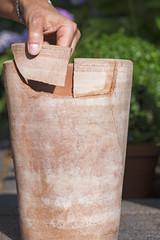 Bruchstücke eines Tontopfes zusammenkleben
