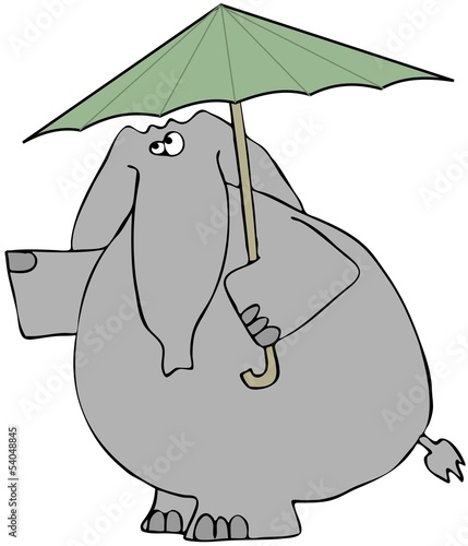 Elephant checking for rain