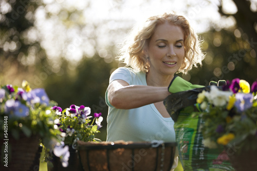 A mature woman planting hanging baskets, close up