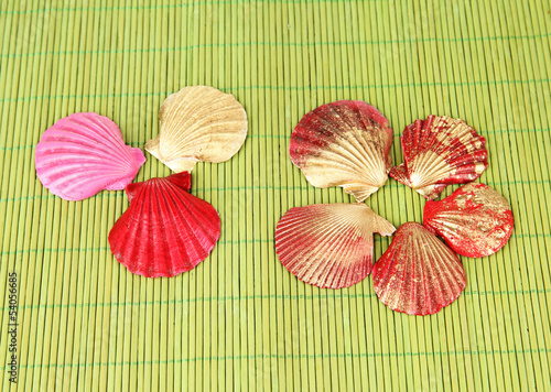 Colorful seashells on bamboo mat background