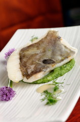 Fine dining, John Dory fish fillet on spinach puree