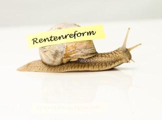 Rentenreform im Schneckentempo