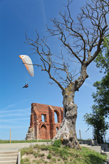 paragliding summer concept
