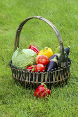 Basket of fruits and vegetables on green grass in the garden