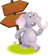 A gray elephant following the direction