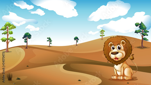 A lion sitting at the desert