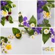 Collage Blumengrüße