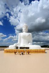 Thai Buddhism wildlife public
