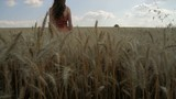 Nature Beauty Young Woman Summer Wheat Field Relax Holiday