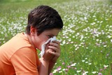allergic boy to pollen and flowers with a handkerchief while sne