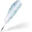 Goose feather, EPS10 - vector graphics.