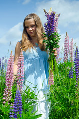 Teenager collects lupine flowers
