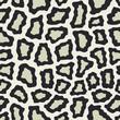 Animal pattern