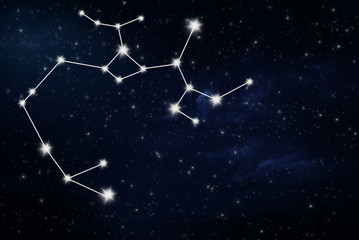 sagittarius horoscope star sign