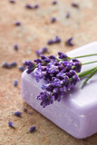 Fototapety Violet soap with fresh lavender flowers