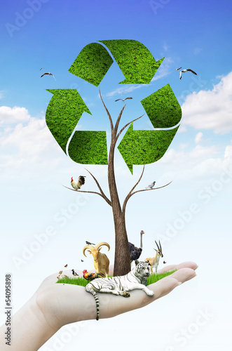 hand holding tree as a recycle symbol with animal
