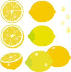 レモンの果実とスライスレモン