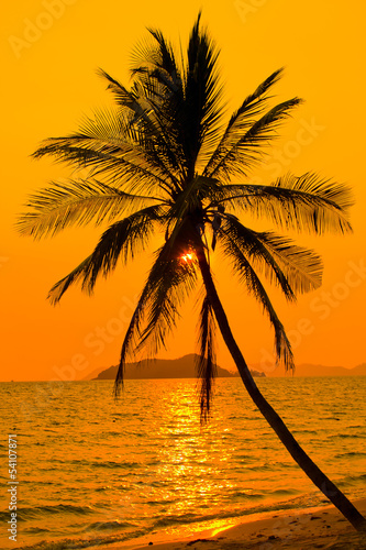 Tropical sunset, Thailand. - 54107871