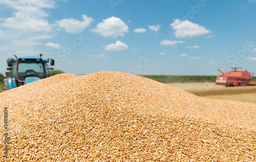 heap grain wheat