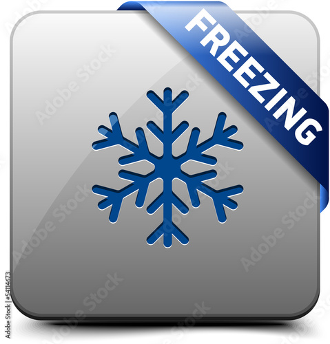 Freezing button