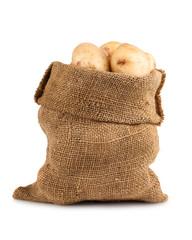 Ripe potato in burlap sack
