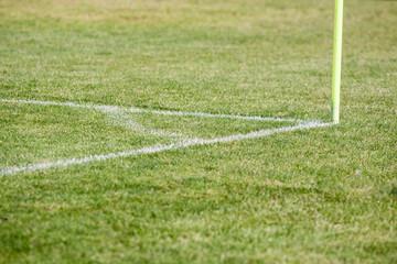 Linia Piłka Nożna