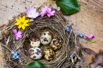 little nest with eggs on a wooden table - easter still life