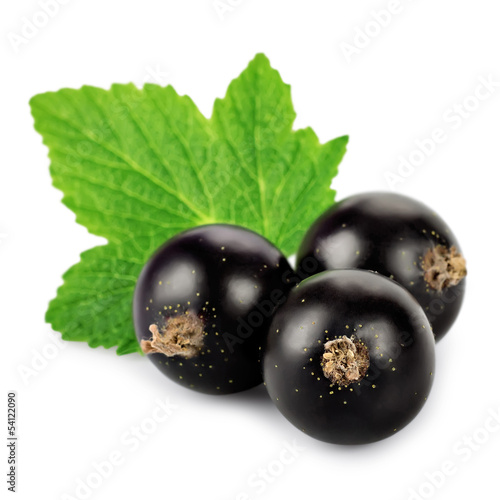 Three black currant